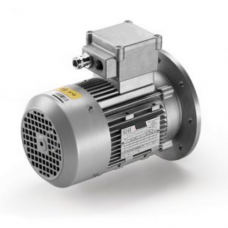 Motor electric AntiEx RL