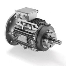Motor electric cu frana R